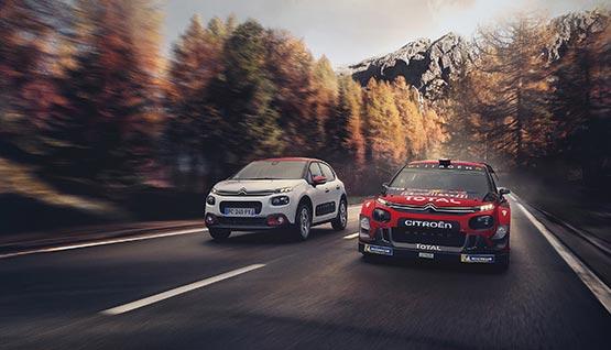 Large-photo-3-C3-WRC_555x318